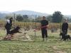 Cyno Pro Aude - Le travail en groupe